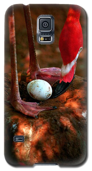 Galaxy S5 Case featuring the photograph Bird Is The Word by Lon Casler Bixby