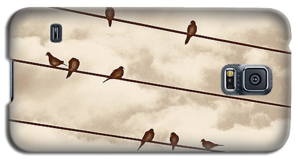 Birds On Wires Galaxy S5 Case by Susan Kinney
