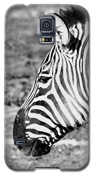 Black And White All Over Galaxy S5 Case by Elizabeth Budd
