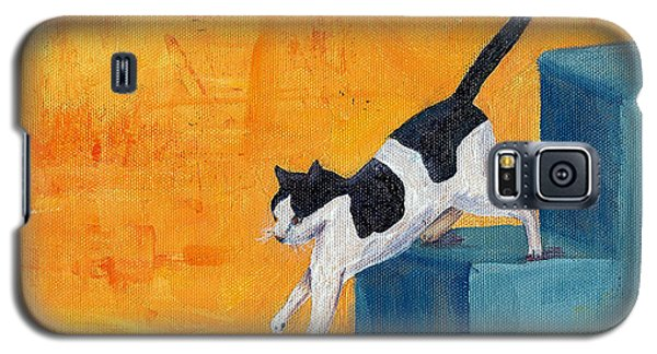 Black And White Cat Descending Blue Stairs Galaxy S5 Case by Terry Taylor
