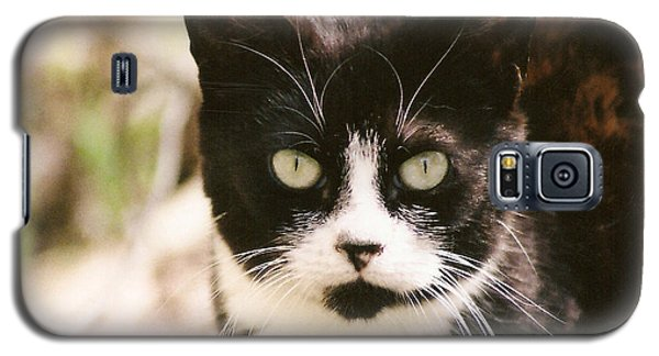 Galaxy S5 Case featuring the photograph Black And White Feral Cat by Chriss Pagani