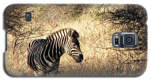 Galaxy S5 Case featuring the photograph Black And White by William Fields