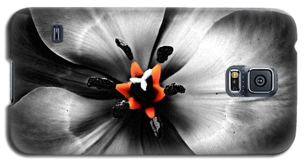 Black And White With A Glow Of Color Galaxy S5 Case