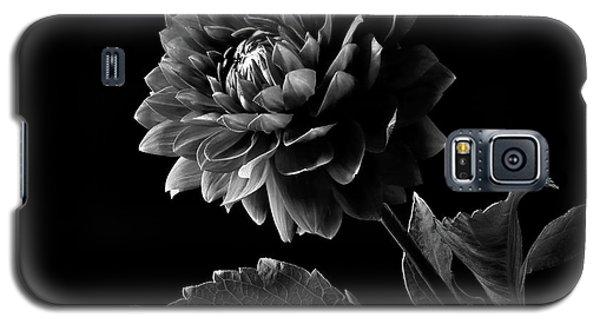 Black Dahlia In Black And White Galaxy S5 Case
