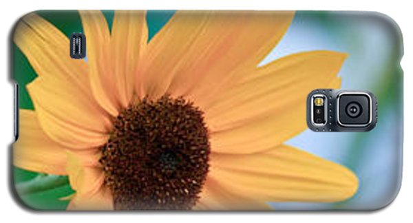 Galaxy S5 Case featuring the photograph Black-eyed Susan by Ann Murphy
