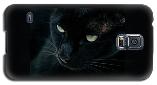 Black Panther Galaxy S5 Case by Laura Melis
