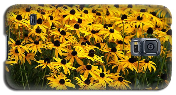 Blackeyed Susan Galaxy S5 Case