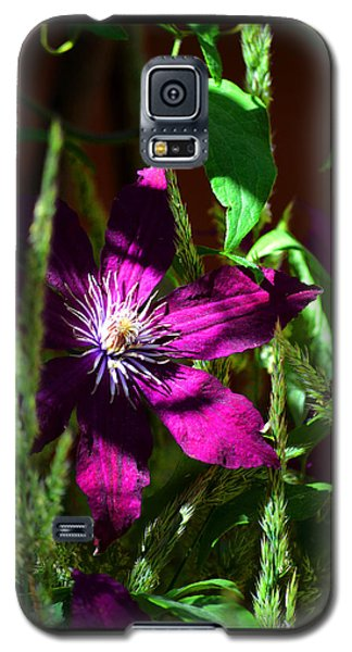 Galaxy S5 Case featuring the photograph Blooming Clematis by Susanne Still