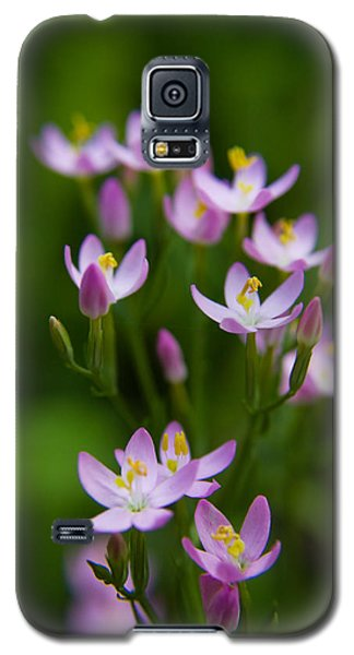 Blooming Pink Petals Galaxy S5 Case