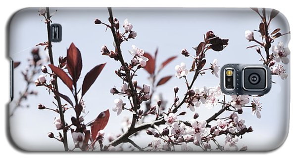 Blossoms In Time Galaxy S5 Case