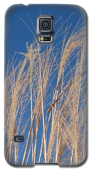 Galaxy S5 Case featuring the photograph Blowing In The Wind by Barbara McMahon