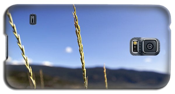 Blowing In The Wind Galaxy S5 Case by JM Photography