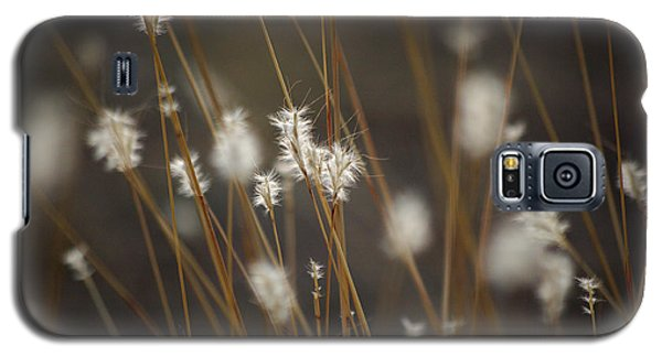 Galaxy S5 Case featuring the photograph Blowing In The Wind by Vicki Pelham