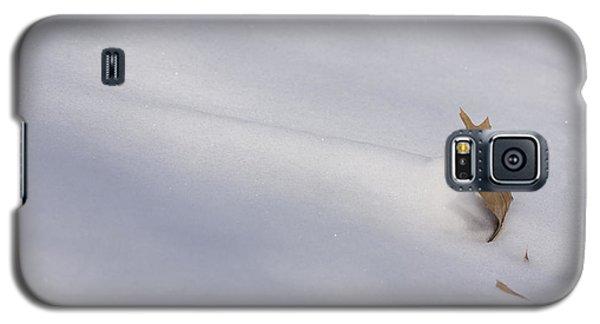 Blown Snow And Oak Leaf Galaxy S5 Case
