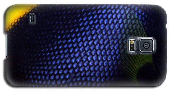 Blue And Yellow Scales Galaxy S5 Case