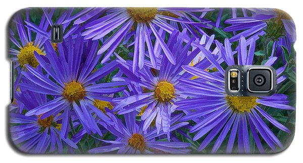 Blue Asters Galaxy S5 Case