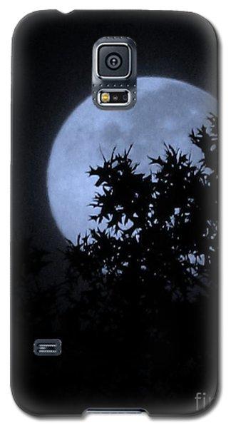 Blue August Galaxy S5 Case