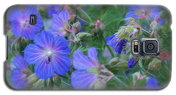Galaxy S5 Case featuring the photograph Blue Beauties by Robin Regan