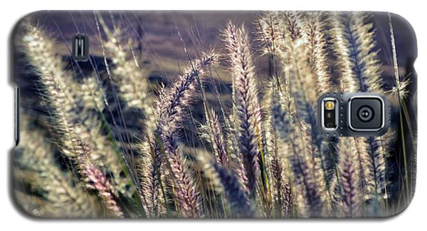 Galaxy S5 Case featuring the photograph Blue Buffalo Grass by Werner Lehmann