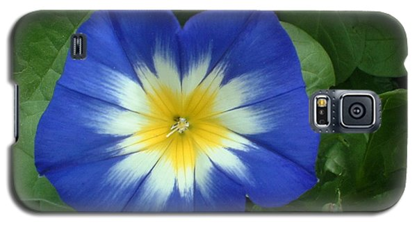 Galaxy S5 Case featuring the photograph Blue Burst by Bonfire Photography