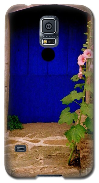 Blue Door And Pink Hollyhocks Galaxy S5 Case