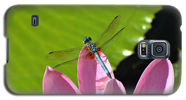 Galaxy S5 Case featuring the photograph Blue Dragonfly On Pink Water Lilly by Jodi Terracina