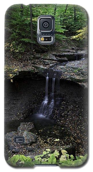 Blue Hen Falls Galaxy S5 Case