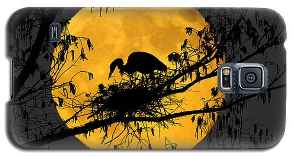 Galaxy S5 Case featuring the photograph Blue Heron On Roost by Dan Friend