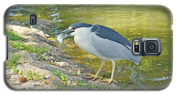 Blue Heron With Fish Galaxy S5 Case by J Jaiam