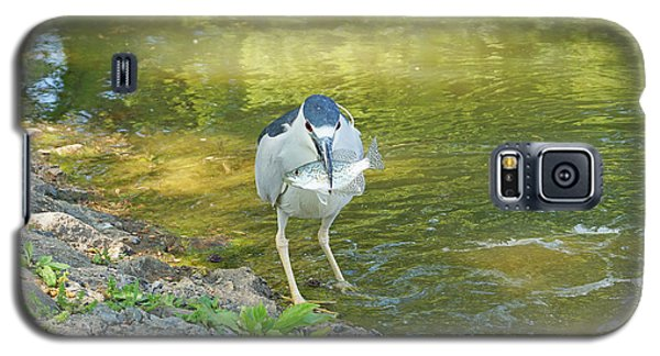 Blue Heron With Fish One Galaxy S5 Case by J Jaiam