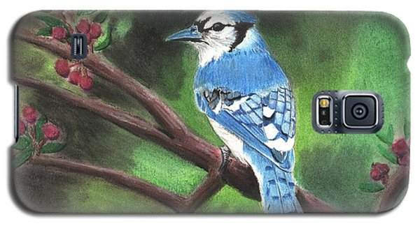 Blue Jay Galaxy S5 Case