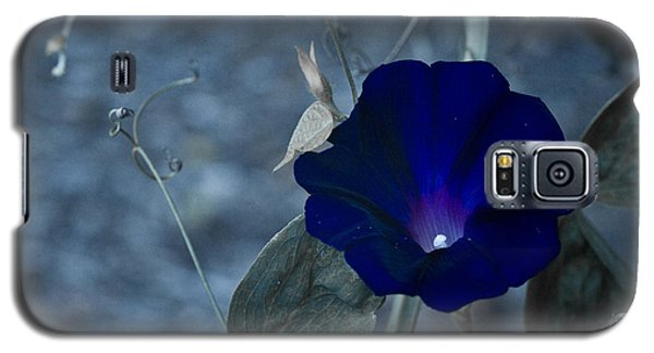 Blue Petunia 2 Galaxy S5 Case