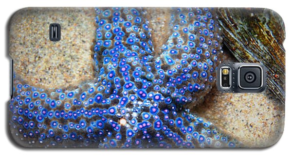 Blue Starfish Galaxy S5 Case