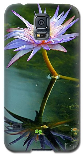 Galaxy S5 Case featuring the photograph Blue Stargazer Lily by Larry Nieland