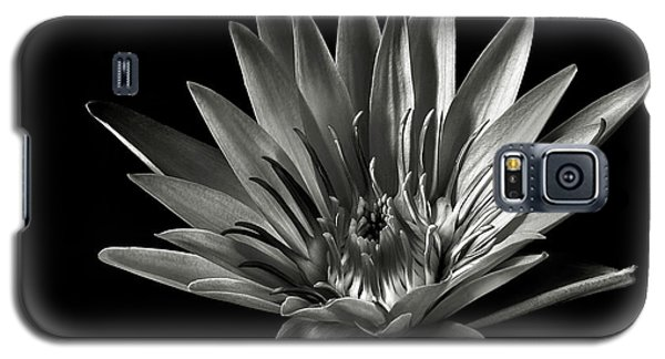 Galaxy S5 Case featuring the photograph Blue Water Lily In Black And White by Endre Balogh