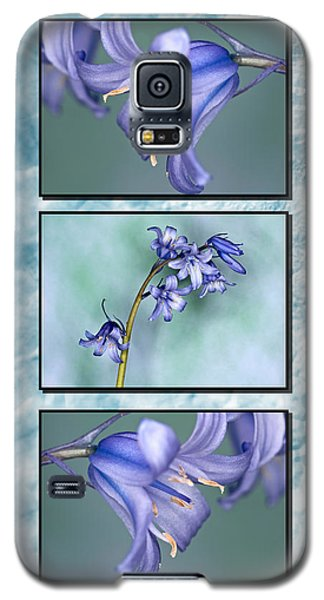 Galaxy S5 Case featuring the photograph Bluebell Triptych by Steve Purnell