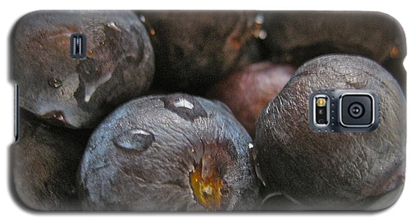 Galaxy S5 Case featuring the photograph Blueberries  by Bill Owen