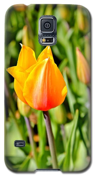 Blushing Lady Galaxy S5 Case