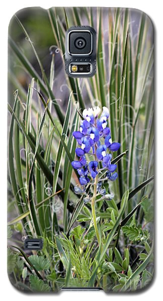Bonnet Spines Galaxy S5 Case