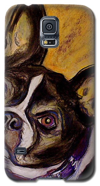Galaxy S5 Case featuring the painting Boston Terrier by D Renee Wilson
