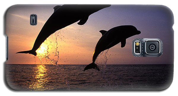 Bottlenose Dolphins Galaxy S5 Case by Francois Gohier and Photo Researchers