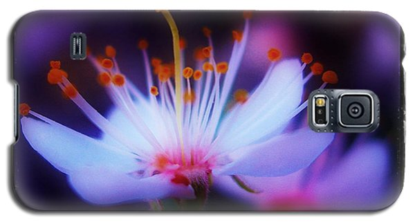 Galaxy S5 Case featuring the photograph Bradford Ballet by Judi Bagwell