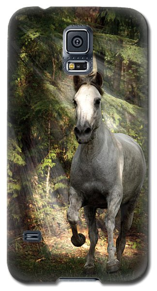 Breaking Dawn Gallop Galaxy S5 Case by Wes and Dotty Weber