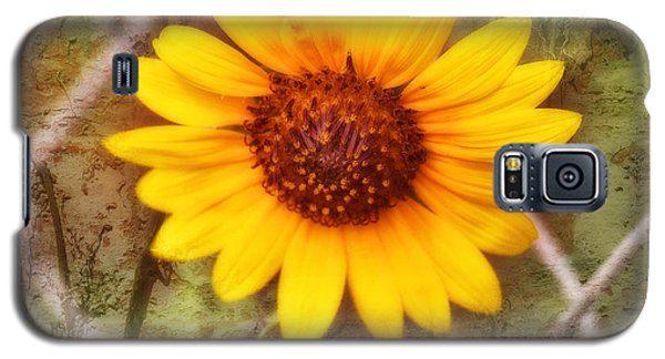 Galaxy S5 Case featuring the photograph Breaking Out by Joan Bertucci