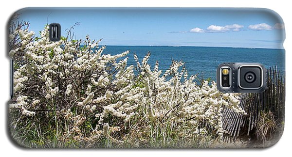 Galaxy S5 Case featuring the photograph Brewster Beach by Robin Regan