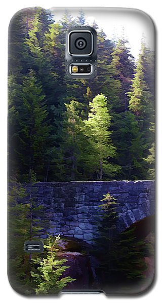 Bridge In The Middle Of Beauty Galaxy S5 Case