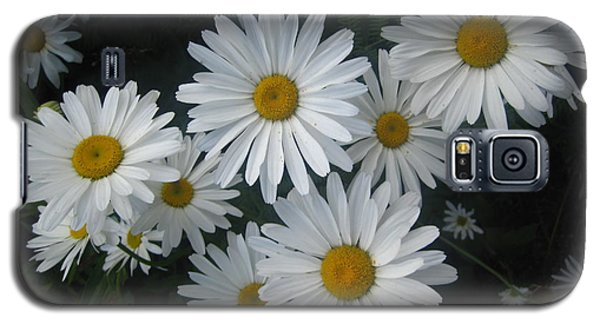 Bright Eyed Daisys Galaxy S5 Case