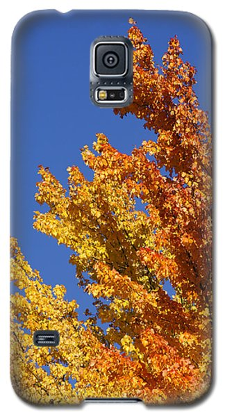 Galaxy S5 Case featuring the photograph Brilliant Fall Color And Deep Blue Sky by Mick Anderson