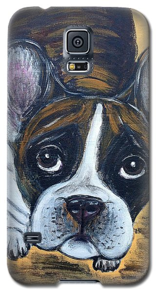 Brindle Frenchie Galaxy S5 Case