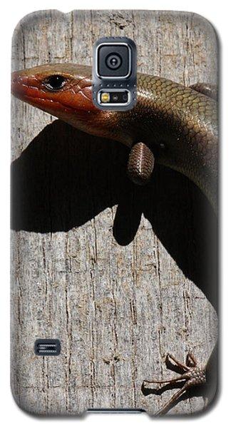 Broad-headed Skink On Barn  Galaxy S5 Case